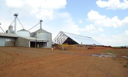 Armazenamento de Grãos e Biodiesel